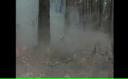 Incendiile din Rusia afectează calitatea aerului