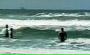 Tot mai multe balene eşuează pe coastele Braziliei