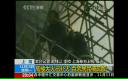 Incendiu într-un zgârie-nori din China