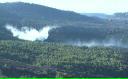 Doi suspecţi în cazul incendiului forestier din Israel