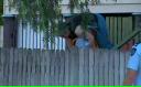 Sute de mii de australieni, evacuaţi din cauza inundaţiilor