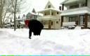 SUA afectate de furtuni de zăpadă