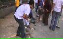 Protestatarii din Cairo şterg urmele revoltelor