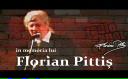 Secventa cu Pittiș în rolul greierului din filmul Veronica